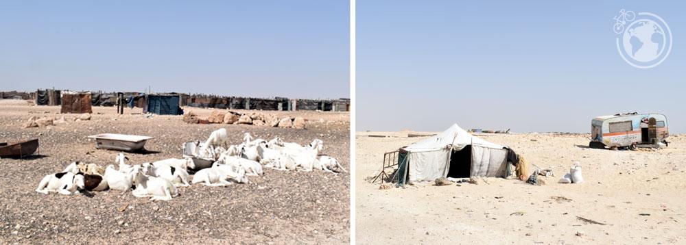 mauritania_04